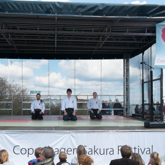 Copenhagen-Sakura-festival-32.jpg