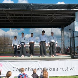 Copenhagen-Sakura-festival-34.jpg
