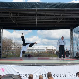 Copenhagen-Sakura-festival-33.jpg