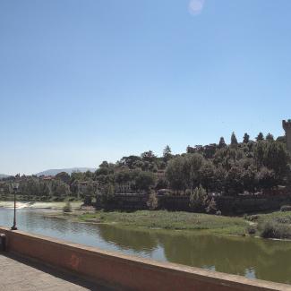 Firenze-12.jpg