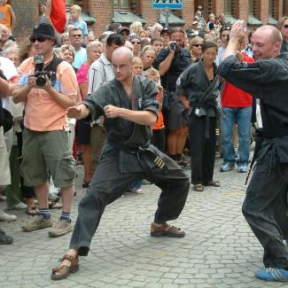 Landskronakarnevalen-2005-41.jpg
