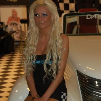 Scandinavian-Custom-Show-2008-1.jpg