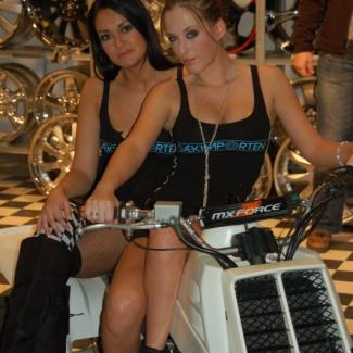 Scandinavian-Custom-Show-2008.jpg