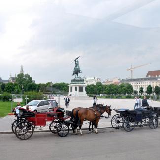Wien-6.jpg