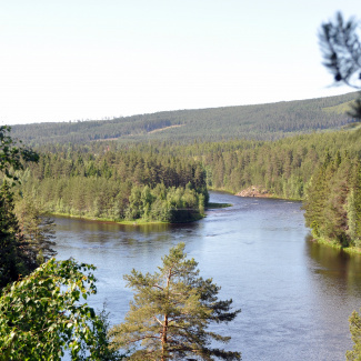 Österdalälven ved Älvdalen by